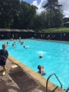 pool1_132